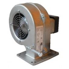KG Elektronik DP-02
